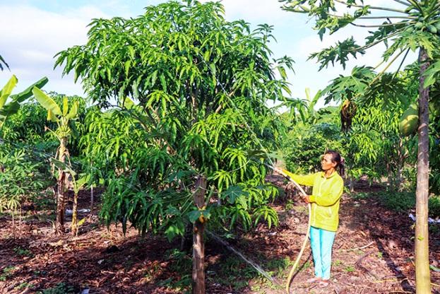 Năm 2025: Khánh Hòa phấn đấu đạt chuẩn huyện nông thôn mới nâng cao
